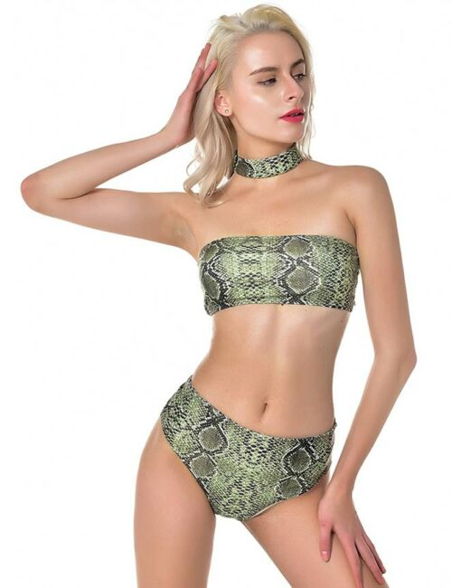 Swim Rags Summer Snake Skin Bikini Set