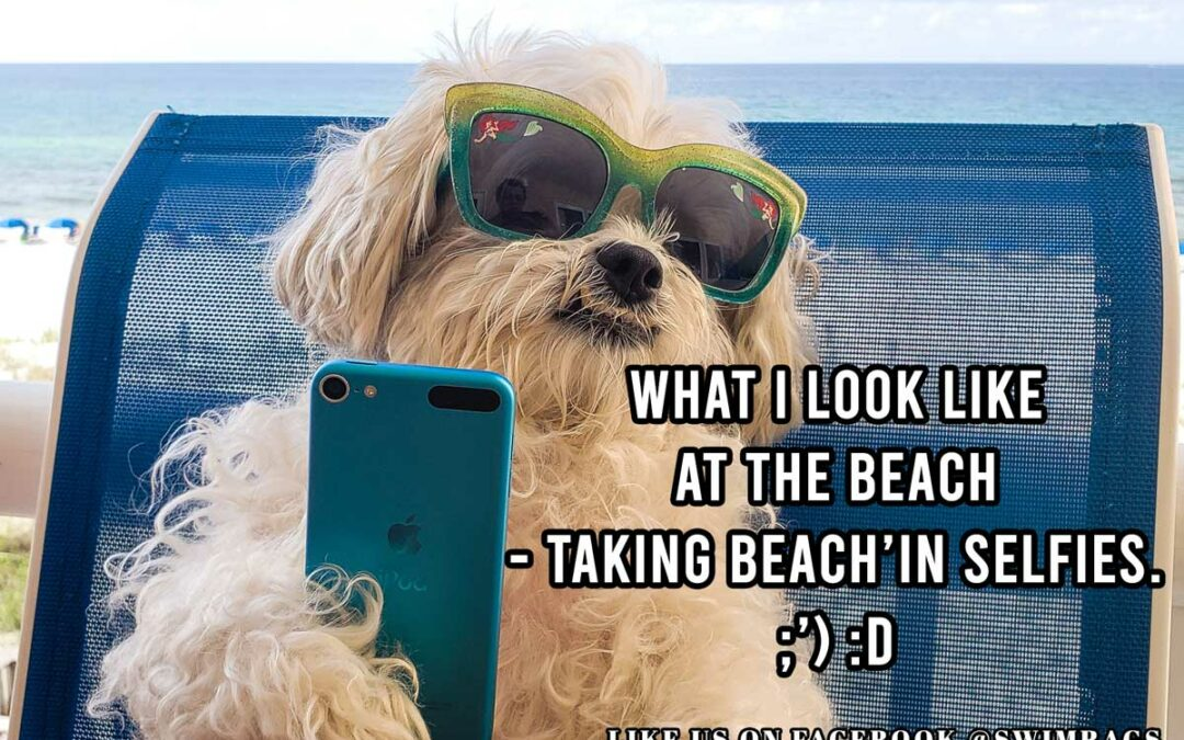 Funny Beach Meme: Me Taking Beach'in Selfies
