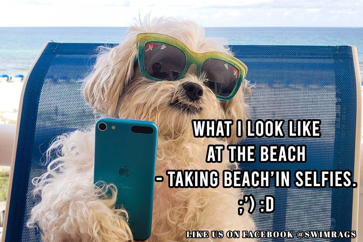 Funny Beach Meme: Me Taking Beach'in Selfies | Swim Rags