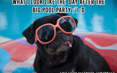 Funny Beach Meme: What I look like the Day After the Big Pool Party